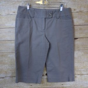 Ann Taylor Signature Taupe Walking Shorts - size 6